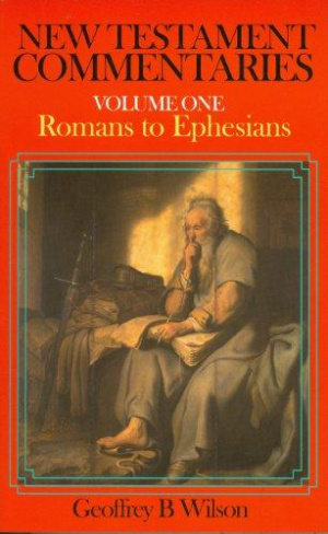 Romans - Ephesians : Vol 1 : New Testament Commentary