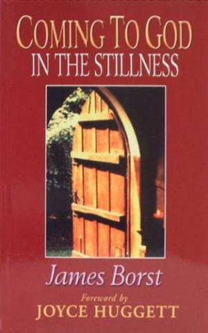 Coming To God In The Stillness Pb