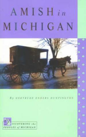 Amish In Michigan