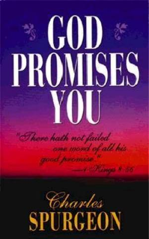 God Promises You