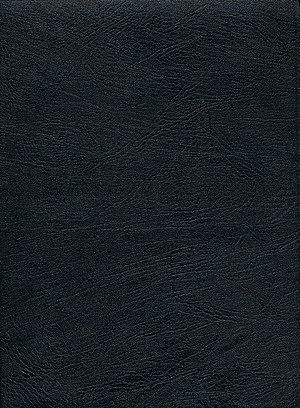 KJV Thompson Chain Reference Large Print Bible