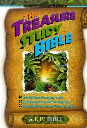 AV Treasure Study Bible H/b