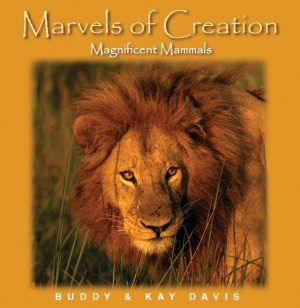 Marvels Of Creation Magnificent Mamma Hb
