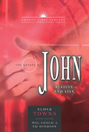 John : 21st Century Biblical Commentary