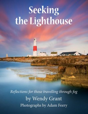 Seeking the Lighthouse book