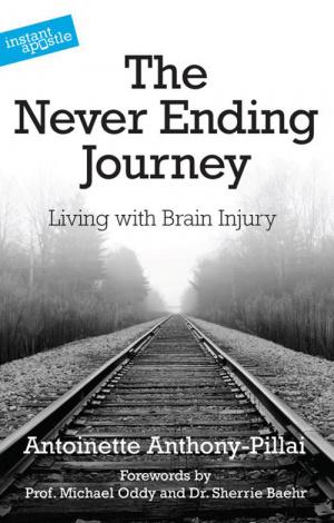 Never Ending Journey, The