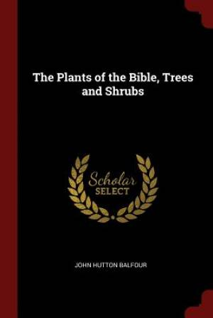 The Plants of the Bible, Trees and Shrubs