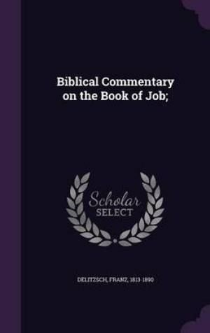 Biblical Commentary on the Book of Job;