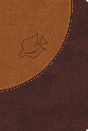 NIV New Spirit Filled Life Bible : Brown, Imitation Leather, Thumb Indexed