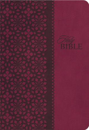 Kjv Study Bible 2nd Ed Lthlk Maroon