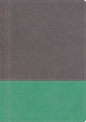 NKJV Modern Life Study Bible, Turquoise Grey,