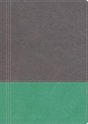 NKJV Modern Life Study Bible, Imitation Leather Turquoise Grey, Thumb Index