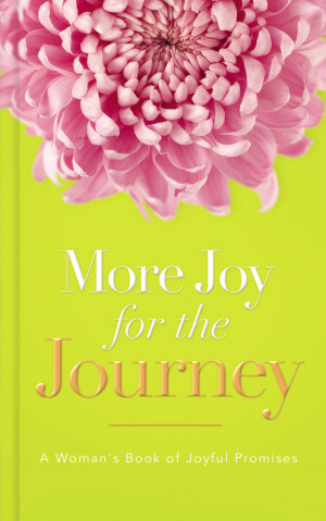 More Joy For The Journey Hb
