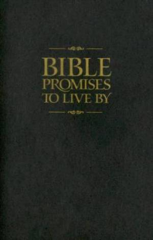 Bible Promises To Live By Pb