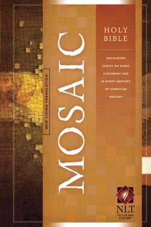 NLT Mosaic Holy Bible: Hardback