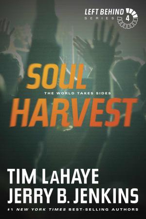Soul Harvest Vol 4 Rev Ed Pb
