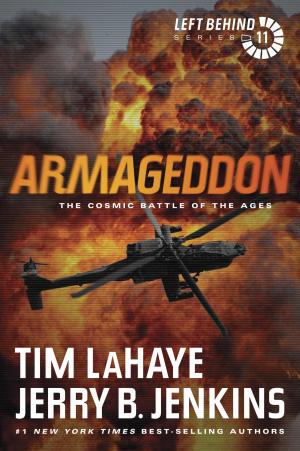 Armageddon Vol 11 Rev Ed Pb