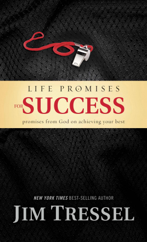 Life Promises For Success Hb