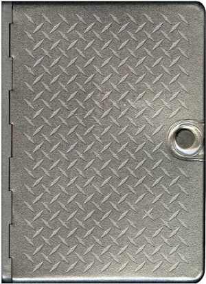 NLT Metal Bible Diamond Plate
