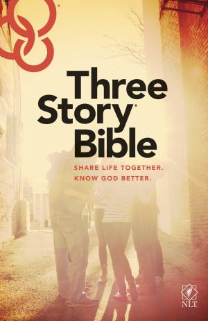 NLT Three Story Bible