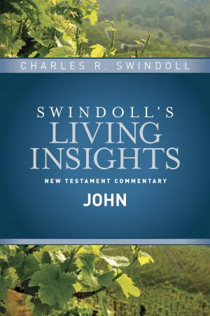 Insights On John Hb
