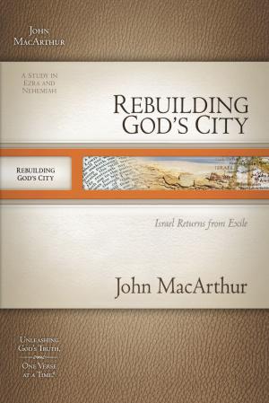 Rebuilding Gods City #12 Pb