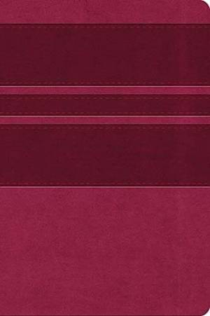 KJV Ultraslim Cranberry Bible