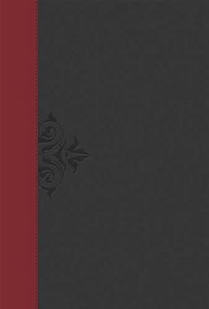 NKJV - Lucado Life Lessons Study Bible