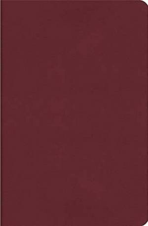 NKJV Lucado Life Lessons Study Bible Burgundy