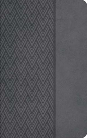 KJV Compact Ultraslim Bible, Grey Imitation Leather