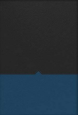 Charles F. Stanley Life Principles Bible-NKJV