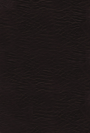 KJV Woman's Study Bible: Burgundy, Bonded Leather, Thumb Indexed