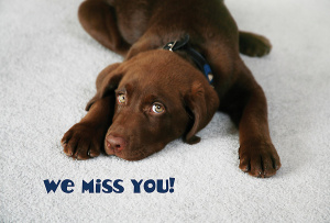 We Miss You Children Postcard (pack of 25)