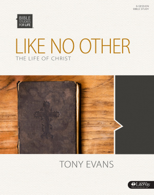 Like No Other: The Life of Christ Group Member Book