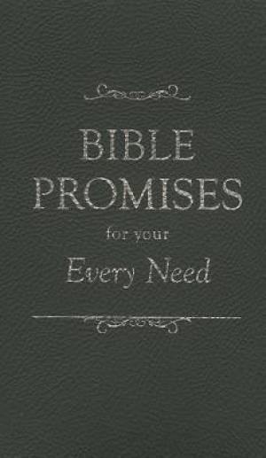 Bible Promises For Every Need