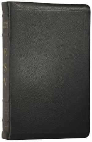 ESV Study Bible: Black, Premium Calfskin