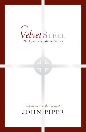 Velvet Steel Hb