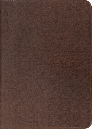 ESV Study Bible Cowhide Dark Brown