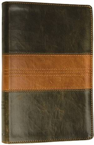 ESV Thinline Bible Imitation Leather Green / Brown