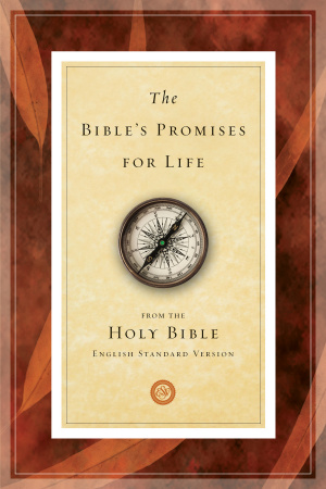 Bibles Promises For Life The Pb