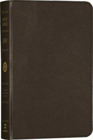 ESV Large Print Compact Bible Imitation Leather Charcoal