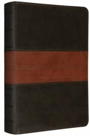 ESV Personal Reference Bible (Trutone, Deep Brown/Tan, Trail