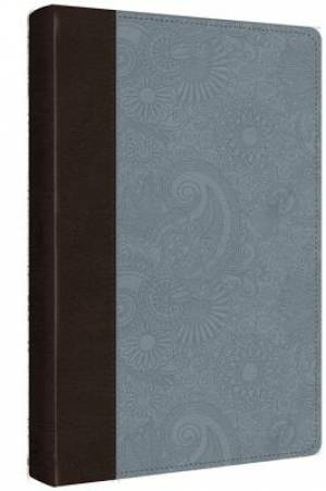 ESV Ultrathin Bible: Chocolate/Blue, Imitation Leather