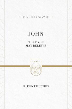 John : Preaching the Word