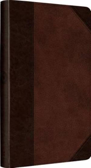 ESV Ultrathin Bible Brown Imitation Leather