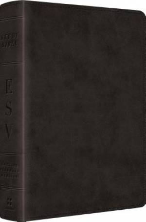 ESV Study Personal Size Bible: Black, Imitation Leather