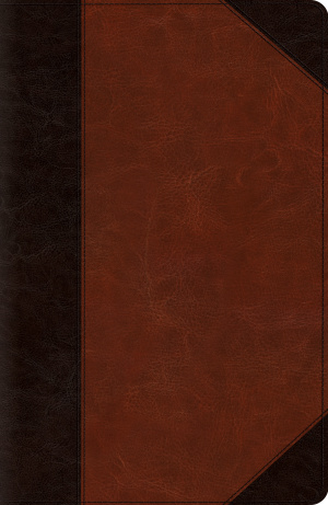 ESV New Classic Reference Bible