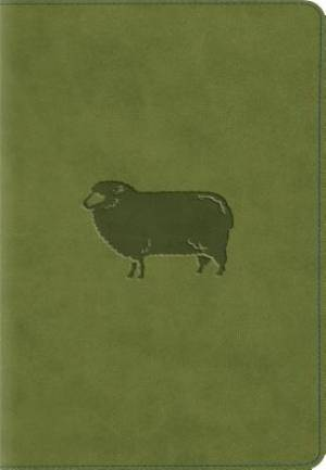 ESV Kid's Compact Bible (TruTone, Green Pastures)