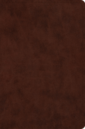 ESV Compact Bible (TruTone, Brown)