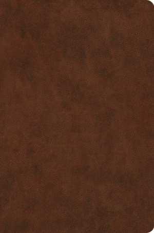 ESV Value Compact Bible (TruTone, Brown)